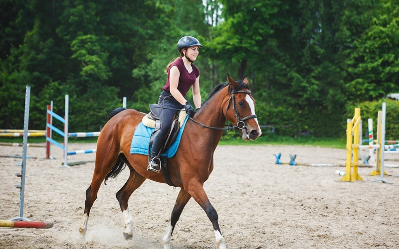Girl riding horse in equestrian centre
