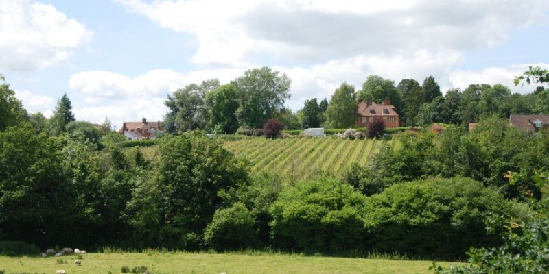 Customer building approved at Wiltshire Vineyard