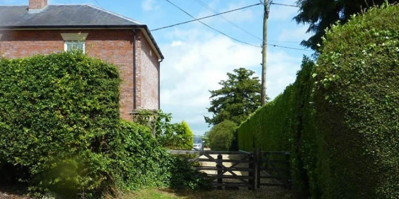 Removal of planning condition permitted in Wiltshire