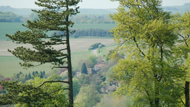 view of Marlborough Downs